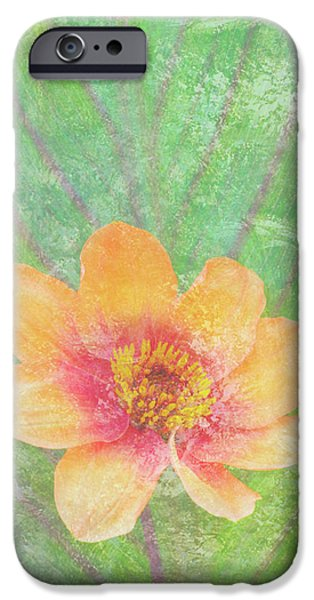 Butterflies Paintings iPhone Cases - Perfect Peach iPhone Case by JQ Licensing