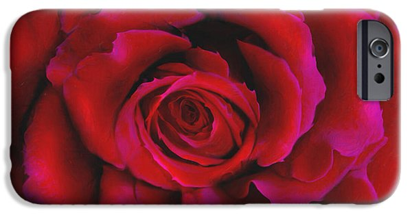 Day iPhone Cases - Perfect Rose iPhone Case by Joel Payne
