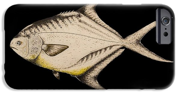 Permit iPhone Cases - Permit iPhone Case by Ted Reeves