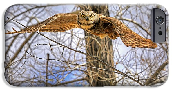 Flight iPhone Cases - Perturbed iPhone Case by Donna Kennedy