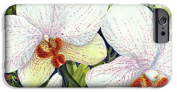 Phalaenopsis iPhone Cases - Phalaenopsis iPhone Case by Karen Wright