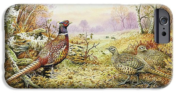 Forest iPhone Cases - Pheasants in Woodland iPhone Case by Carl Donner