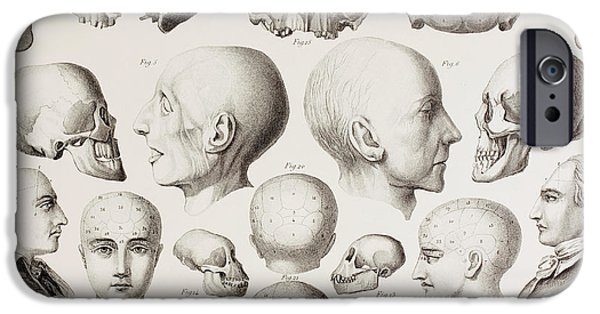 Psychiatric iPhone Cases - Phrenological illustration iPhone Case by English School