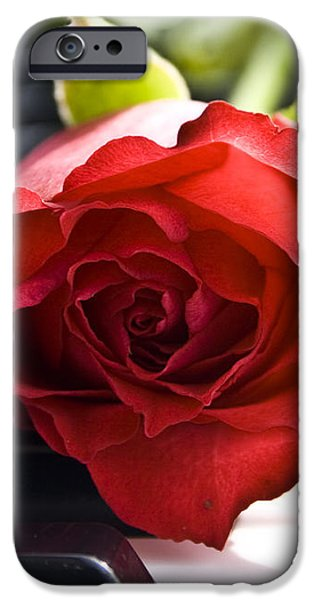 Piano Rose iPhone Case by Sophie De Roumanie