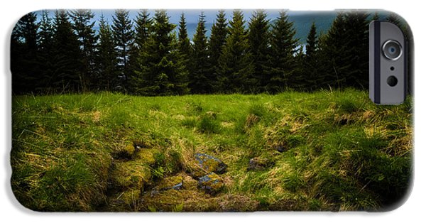 Pines iPhone Cases - Pine Blockade iPhone Case by Tor-Ivar Naess