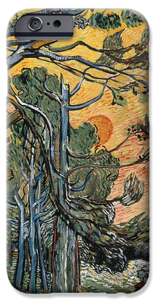 Trees At Sunset iPhone Cases - Pine Trees at Sunset iPhone Case by Vincent van Gogh
