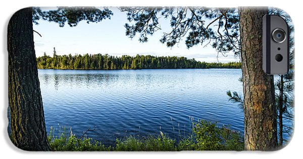 Pines iPhone Cases - Pines guarding the shore iPhone Case by Joe Miller