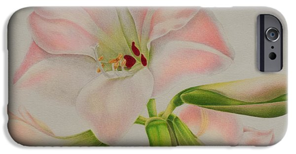 Flora Drawings iPhone Cases - Pink Amaryllis iPhone Case by Sharon Patterson