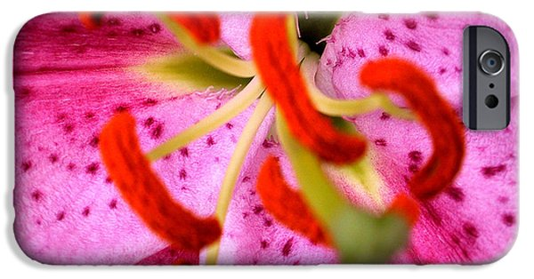 Close Up Floral iPhone Cases - Pink Aroma iPhone Case by Sarah O Toole