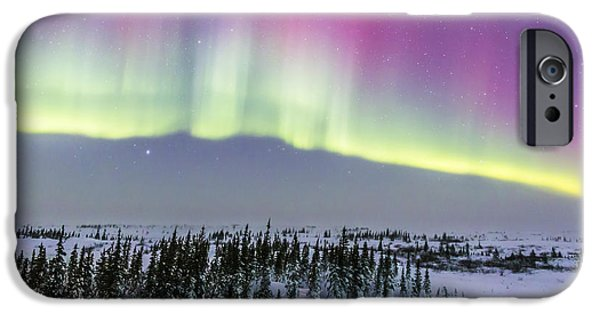 Nature Study iPhone Cases - Pink Aurora Over Boreal Forest iPhone Case by Alan Dyer