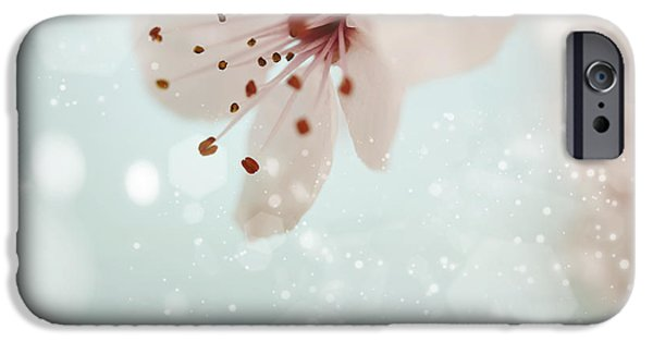 Fukushima iPhone Cases - Pink cherry blossom  iPhone Case by Natalia Klenova