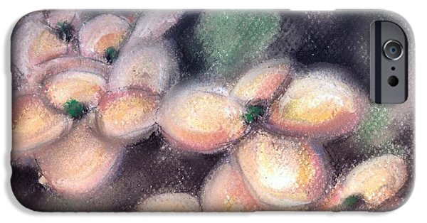 Pastel iPhone Cases - Pink Dogwood iPhone Case by Melissa Herrin