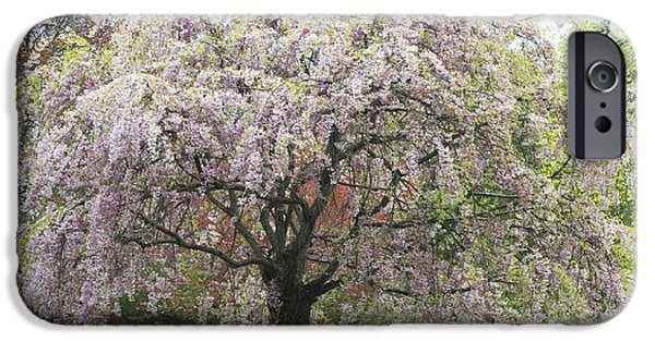 Shower Curtain iPhone Cases - Pink Blossoms  Flowering Tree iPhone Case by Anahi DeCanio - ArtyZen Studios