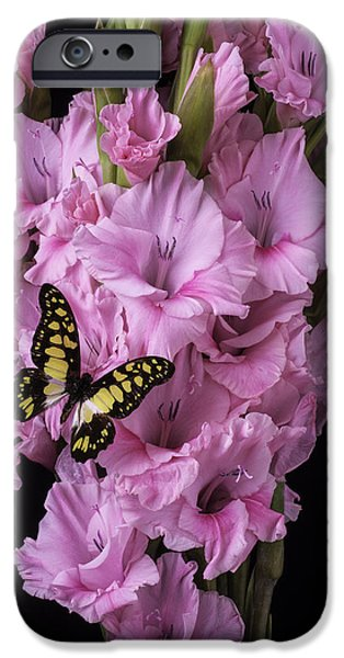 Gladioli iPhone Cases - Pink Glads And Butterfly iPhone Case by Garry Gay