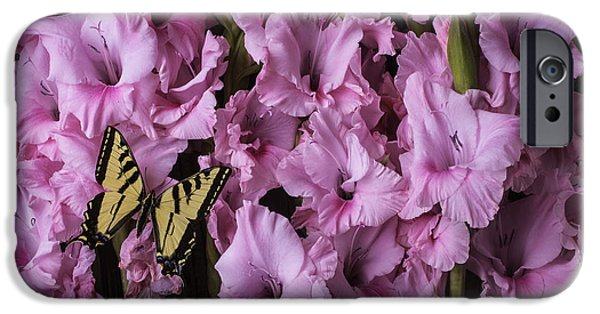 Gladioli iPhone Cases - Pink Glads With Yellow Butterfly iPhone Case by Garry Gay