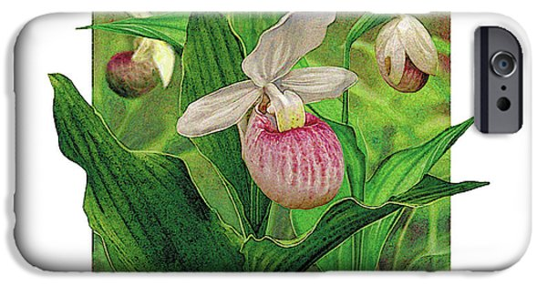 Plant iPhone Cases - Pink Lady Slipper iPhone Case by JQ Licensing