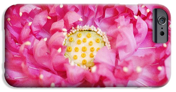 Bangkok iPhone Cases - Pink Lotus iPhone Case by Ray Laskowitz - Printscapes