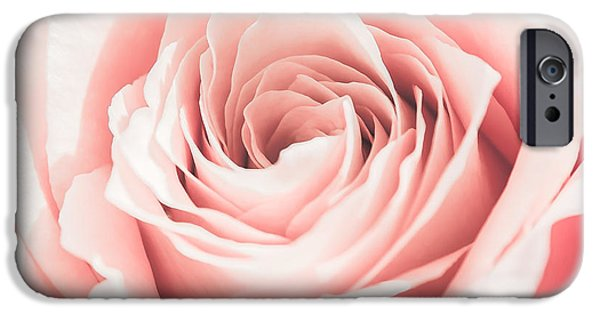 Close Up Pyrography iPhone Cases - Pink Rose Close Up iPhone Case by Olga Photography