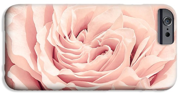 Close Up Pyrography iPhone Cases - Pink Rose iPhone Case by Olga Photography