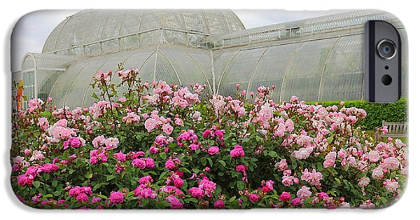 United iPhone Cases - Pink Roses At Kew iPhone Case by Rumyana Whitcher