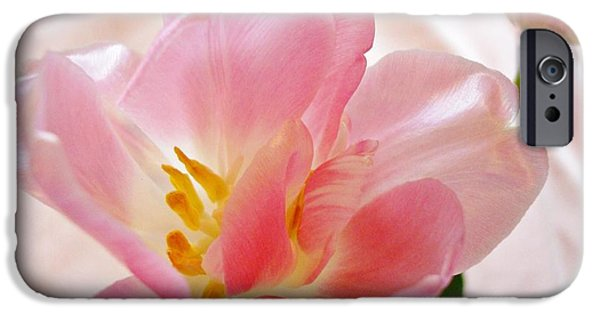 Floral Photographs iPhone Cases - Pink Satin iPhone Case by Kathy Bucari