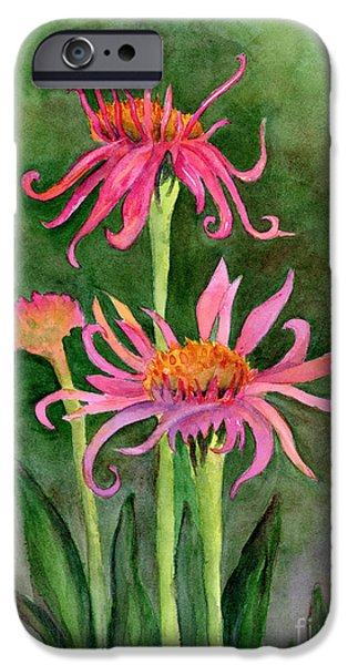 Cone Flower iPhone Cases - Pink Tutus - Cone Flowers iPhone Case by Amy Kirkpatrick