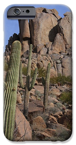 Pinnacle Peak landscape iPhone Case by James BO  Insogna