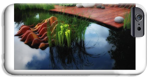 Reflection In Pitcher iPhone Cases - Pitcher Plant Garden 2 poster iPhone Case by Mike Nellums