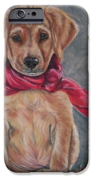 Puppies Pastels iPhone Cases - Pitiful iPhone Case by Linda Eversole