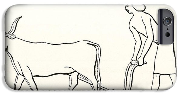 Animal Drawings iPhone Cases - Ploughing With Oxen In Ancient Egypt iPhone Case by Ken Welsh