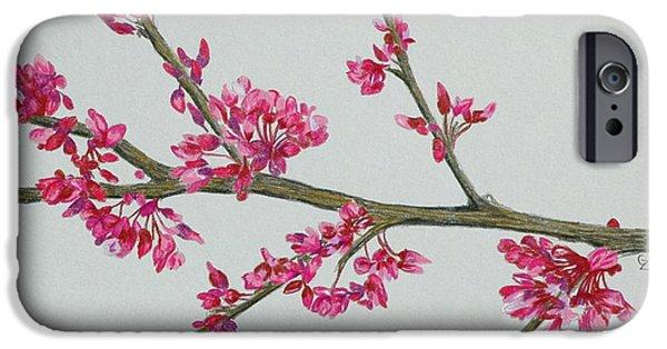 Flora Drawings iPhone Cases - Plum Blossom iPhone Case by Glenda Zuckerman