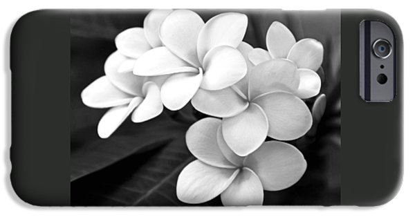 Square Photographs iPhone Cases - Plumeria - Black and White iPhone Case by Kerri Ligatich