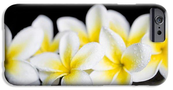 Botanical Photographs iPhone Cases - Plumeria obtusa Singapore White iPhone Case by Sharon Mau