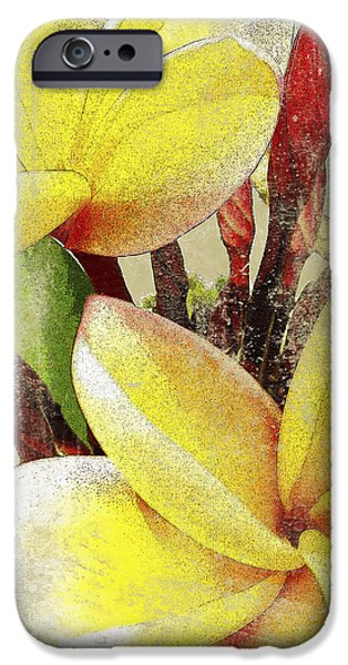 Art Medium iPhone Cases - Plumier II iPhone Case by Kaypee Soh - Printscapes