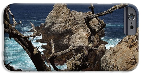 Rocks iPhone Cases - Point Lobos Rocks and Branches iPhone Case by Charlene Mitchell
