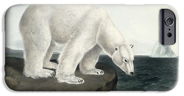 1856 iPhone Cases - Polar Bear iPhone Case by John James Audubon