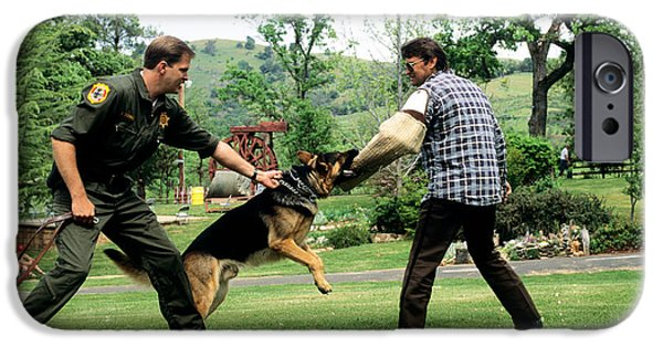 Police Dog iPhone Cases - Police Dog Training iPhone Case by Inga Spence