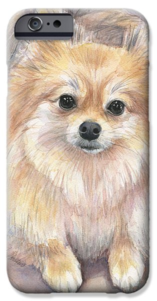 Furry iPhone Cases - Pomeranian Watercolor iPhone Case by Olga Shvartsur
