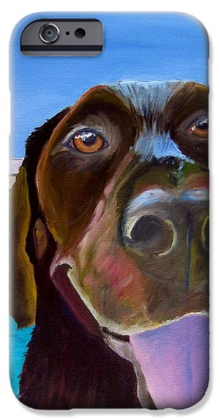 Chocolate Lab iPhone Cases - Pool Boy iPhone Case by Roger Wedegis