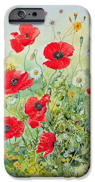 Botanical Paintings iPhone Cases - Poppies and Mayweed iPhone Case by John Gubbins