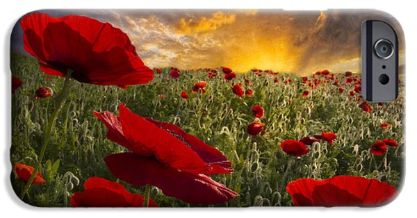 Summer iPhone Cases - Poppy Field iPhone Case by Debra and Dave Vanderlaan