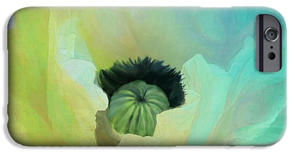 California Poppies iPhone Cases - Poppy Gradient Aqua iPhone Case by Mindy Sommers