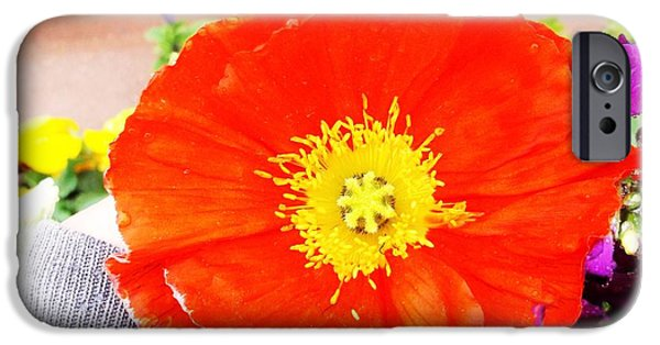 Rainy Day iPhone Cases - Poppy Red iPhone Case by Andrew Moreno