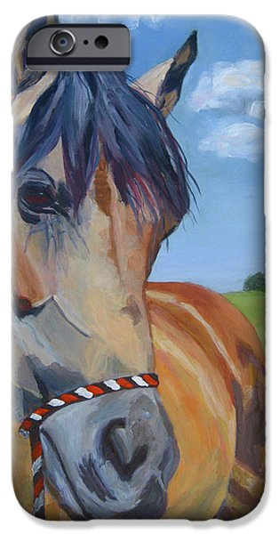 Horse Artist iPhone Cases - Poppys Paradise iPhone Case by Anne West