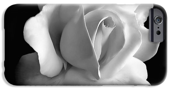 Plant iPhone Cases - Porcelain Rose Flower Black and White iPhone Case by Jennie Marie Schell