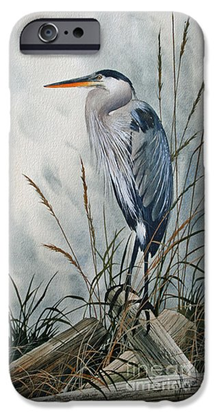 Heron Paintings iPhone Cases - Portrait in the Wild iPhone Case by James Williamson