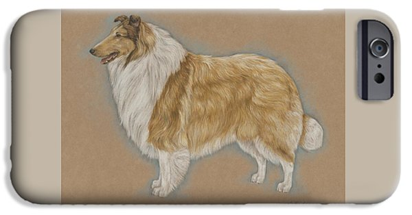 Dogs iPhone Cases - Portrait of a Collie iPhone Case by Ann Johnston