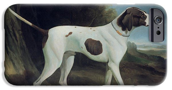 Working Dogs iPhone Cases - Portrait of a liver and white pointer iPhone Case by George Garrard