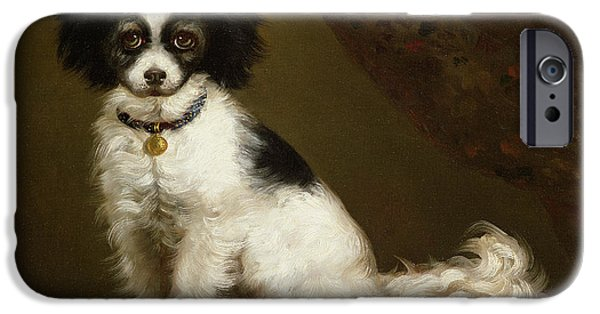 Working Dogs iPhone Cases - Portrait of a Spaniel iPhone Case by Anonymous