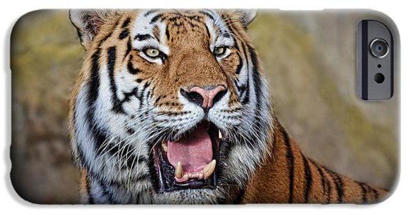 Gray Hair iPhone Cases - Portrait of a Tiger II iPhone Case by Jim Fitzpatrick